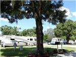 View larger image of RVs camping at TAMPA RV PARK image #4