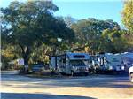 View larger image of RVs and trailers at campground at TAMPA RV PARK image #9