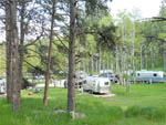 View larger image of CUSTERS GULCH RV PARK  CAMPGROUND at CUSTER SD image #1