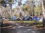 View larger image of Tents camping at NOVA FAMILY CAMPGROUND image #3