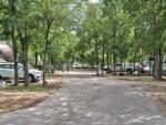 View larger image of Trailers camping at OAK FOREST RV RESORT image #4
