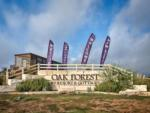 View larger image of Wood carving at OAK FOREST RV RESORT image #12