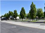 View larger image of Trailers camping and tree branches at HORN RAPIDS RV RESORT image #7