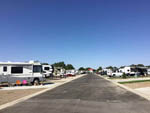 View larger image of Looking down a row of motorhomes at MOUNTAIN HOME RV RESORT image #11
