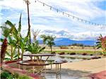 View larger image of Round picnic table with palms and view of the distant mountains at SHADOW HILLS RV RESORT image #8