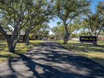View larger image of Large grassy spaces with trees at WOODY ACRES MOBILE HOME  RV RESORT image #2