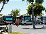 View larger image of RVs parked at MISSION BAY RV RESORT image #5