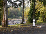 View larger image of River view through the trees at ELKTON RV PARK image #4