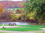View larger image of TALL PINES CAMPGROUND AND CANOEING at BAINBRIDGE NY image #1