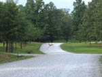 View larger image of Deer sighting at DEER RUN RV RESORT image #3
