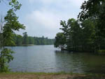 View larger image of Shoreline along heavily wooded lake at DEER RUN RV RESORT image #6