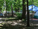 View larger image of RIVERPARK CAMPGROUND at JONESBOROUGH TN image #8