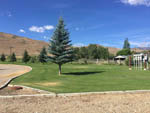 View larger image of Large grass area with evergreen trees at CHALLIS GOLF COURSE RV PARK image #9