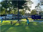 View larger image of Huge palm tree beside trailer at SOUTHERN RETREAT RV PARK image #4