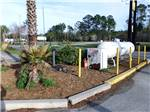 View larger image of Patio area with picnic tables at GOLDEN ISLES RV PARK image #12
