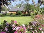 View larger image of Flowers in front of a grassy area at MAJESTIC OAKS RV RESORT image #1