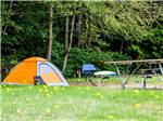 View larger image of Tent camping at BIRCH BAY RESORT -THOUSAND TRAILS image #3