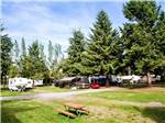 View larger image of RVs and trailers at campgrounds at BIRCH BAY RESORT -THOUSAND TRAILS image #6