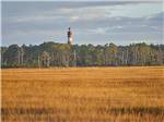 View larger image of One of the cute camping cabins at CHINCOTEAGUE ISLAND KOA image #3