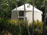 View larger image of Glamping at BROOKINGS RV PARK image #4