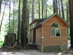 View larger image of Cabin in the redwood trees at RAMBLIN REDWOODS CAMPGROUND image #2