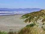 View larger image of Beach with mountains in the background at RAMBLIN REDWOODS CAMPGROUND image #6