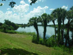 View larger image of View of lake at THE GLADES RV RESORT image #10