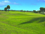 View larger image of View of golf course at THE GLADES RV RESORT image #11