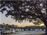 View larger image of RVs camping with trees surrounding at PENSACOLA RV PARK image #1