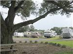 View larger image of Group of 5 Motorhomes camping at PENSACOLA RV PARK image #2