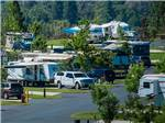View larger image of Many various trailers and RVs at JACKSON RANCHERIA RV PARK image #11