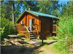 View larger image of Cabin with deck at LA CONNER image #3