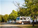 View larger image of Large copper and white RV with various vehicles behind it at MORGAN HILL RV RESORT image #3