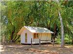 View larger image of Glamping domicile in wooded area at MORGAN HILL RV RESORT image #7