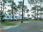 View larger image of Trailers parked in RV sites at CASTAWAYS RV RESORT  CAMPGROUND image #3