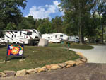 View larger image of RVs parked in paved sites in forest setting at WOODS TALL TIMBER RESORT image #6