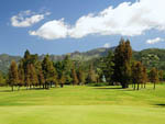 View larger image of Golf course at CALISTOGA RV PARK image #4