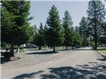 View larger image of RVs camping at LONE MOUNTAIN RV RESORT AND TIPI CAMPGROUND image #2