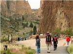 View larger image of Parade downtown at EXPO CENTER RV PARK image #6