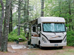 View larger image of RV parked at campsite at PINEWOOD LODGE CAMPGROUND image #6