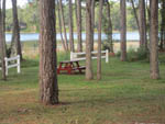 View larger image of A picnic bench sitting under some trees at LAKE WALDENA RESORT image #2
