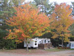 View larger image of AMES BROOK CAMPGROUND at ASHLAND NH image #1