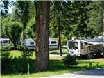 View larger image of Trailers parked in treed sites at BLUE ANCHOR RV PARK image #4