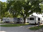 View larger image of Trailers and RVs camping at COVERED WAGON RV RESORT image #6