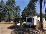 View larger image of GREERS PINE SHADOWS RV PARK at FLAGSTAFF AZ image #1