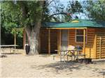 View larger image of Log cabins at CHRIS CAMP  RV PARK image #4