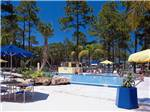 View larger image of People lounging poolside tables with umbrellas and decorative rock formation at SUNSHINE HOLIDAY DAYTONA RV RESORT image #4