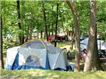 View larger image of Tents camping at YOGI BEARS JELLYSTONE PARK CAMP-RESORT image #2