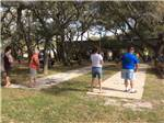 View larger image of People playing shuffleboard at ANCIENT OAKS RV PARK image #11