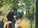 View larger image of Horseback riding trail at ARTILLERY RIDGE CAMPING RESORT  GETTYSBURG HORSE PARK image #3